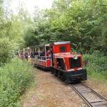 Compagnie du chemin de fer de Semur-en-Vallon, Muséotrain