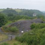 PlantEvol, Terril (mines de charbon) des Malécots 49